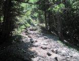 Schneeberg (2076m) - utunk során  a fennsíkig sziklás ösvényen haladunk