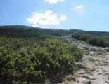 Schneeberg (2076m) - a fennsíkra vezető ösvény