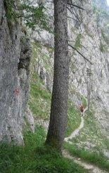 Rax-Alpok: Teufelsbadstubensteig - átmenet kész szakasz között