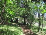 Hohe Wand: Gebirgsvereinssteig - túra a Hubertushaushoz