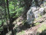 "Hohe Wand: Gebirgsvereinssteig - Springlessteig - ""A"""