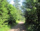 Szlovák Paradicsom: útban a Klastoriskó felé