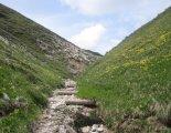 Schneepalpe: Windberg(1903m) - utunk egy gyönyörű, alpesi ösvényen halad