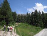 Rax-Alpok: Heukuppe (2007m) - egy szép fenyvesben, túránk elején