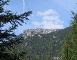 Rax-Alpok: Preinerwandsteig - kilátás, túránk elején a fenyvesből