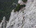 Rax-Alpok: Preinerwandsteig - via ferrata túránk elején - sziklákon egy zerge a kicsinyével