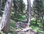 Rax-Alpok: Preinerwandsteig - útban a parkolóba