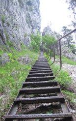 Via ferrata: Rax-Teufelsbadstubensteig - túránk elején, egy hosszú lépcsősoron