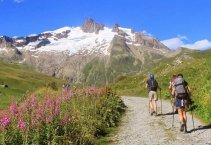 Mont Blanc-kör