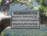 Hohe Wand: Wildenauersteig - túránk végén