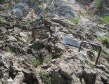 Hohe Wand: Wildenauersteig - túránk elején
