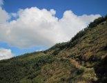 Sölktal varázslatos tájai - a fennsíkra vezető ösvényen