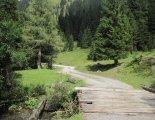 Sölktal varázslatos tájai - a menedékház melletti egyik romantikus ösvényen