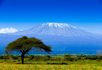 Kilimandzsáró (5895m) - Machame-ösvény - magashegyi trekking